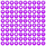 100 leaf icons set purple. 100 leaf icons set in purple circle isolated on white vector illustration Vector Illustration