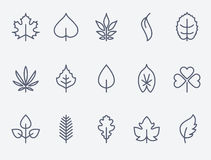 Leaf icons. Set of 15 Leaf icons. Thin lines Vector Illustration