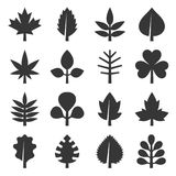 Leaf icons set on White Background. Vector. Illustration Royalty Free Stock Images