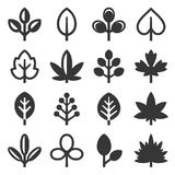 Leaf Icons Set on White Background. Vector Stock Images