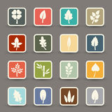 Leaf icons vector Stock Photo
