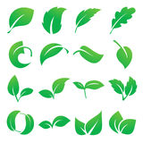 Leaf icons. Vector illustration Stock Photography