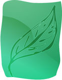 Leaf illustration Stock Photo