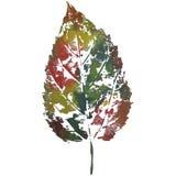 Leaf imprint, sheet printing Royalty Free Stock Image