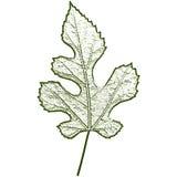 leaf imprint, sheet printing Royalty Free Stock Images