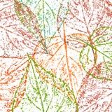 leaf imprint, sheet printing Royalty Free Stock Photos