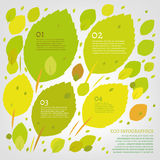 Leaf infographic Stock Image