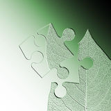 Leaf jigsaw abstract Stock Photos