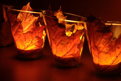Leaf lantern Stock Image