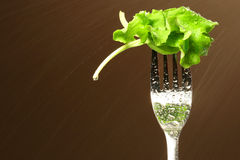 Leaf of lettuce on a fork Royalty Free Stock Photo