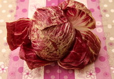 Leaf Lettuce. A raw leaf lettuce in a wonderful red colour royalty free stock image