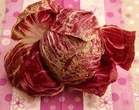 Leaf Lettuce. A raw leaf lettuce in a wonderful red colour royalty free stock photo