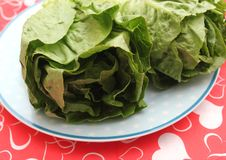 Leaf Lettuce. Some fresh leaf lettuce in green on a plate stock photo
