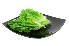 Leaf of lettuce on white background. Isolated Royalty Free Stock Images