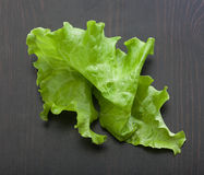 Leaf of lettuce on the wooden table Royalty Free Stock Photo