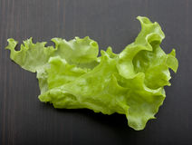 Leaf of lettuce on the wooden table Royalty Free Stock Image