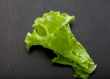 Leaf of lettuce on the wooden table Stock Photography