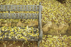 Leaf litter in a park Stock Image