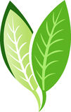 Leaf logo Royalty Free Stock Photo