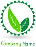 Leaf logo Stock Photo