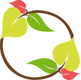 Leaf logo Royalty Free Stock Images