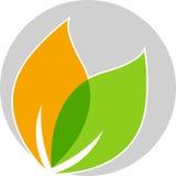 Leaf logo Royalty Free Stock Image