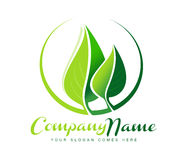Leaf Logo. Concept design with two green leaves and a circle Stock Photo