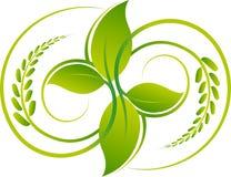 Leaf logo design Stock Image