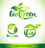 Leaf Logo Icon Vector Design Stock Image