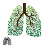 Leaf Lung. Vector, good illustration for go green Stock Photo