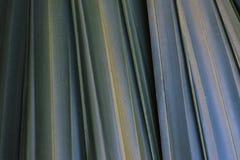 Leaf macrophotography. Textured background image Stock Images