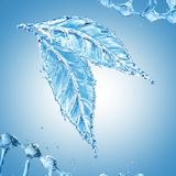 Leaf made of water splash on blue background. 3d rendering Royalty Free Stock Photos