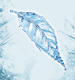 Leaf made of water splash Royalty Free Stock Photography
