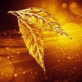 Leaf made of water splash. Gold color Royalty Free Stock Image