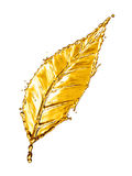 Leaf made of water splash gold color Stock Photography