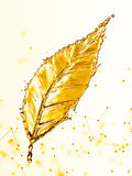 Leaf made of water splash gold color Royalty Free Stock Images