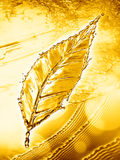 Leaf made of water splash gold color Royalty Free Stock Photography