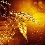 Leaf made of water splash. Gold color. Gold bokeh background. 3d rendering Stock Photos