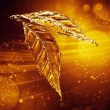 Leaf made of water splash. Gold color. Gold bokeh background. 3d rendering Stock Photo