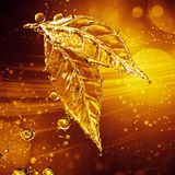Leaf made of water splash. Gold color Stock Photo