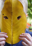 Leaf_mask royalty free stock photos