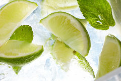 Leaf mint and cut citrus Stock Photos