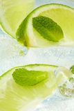 Leaf mint and cut citrus Stock Photography