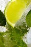 Leaf mint and cut citrus Stock Images