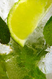 Leaf mint and cut citrus Royalty Free Stock Image