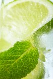 Leaf mint and cut citrus Royalty Free Stock Photo