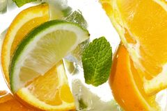 Leaf mint and cut citrus Stock Images