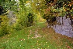 Leaf, Nature, Autumn, Woodland stock photo