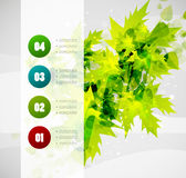 Leaf nature infographics modern template Royalty Free Stock Images