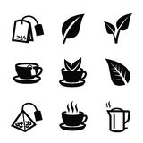 Leaf nature tea vector. Vector black tea icon on white background Royalty Free Stock Photos